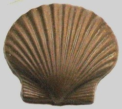 Chocolate Clam Shell w/Ripples Medium - Click Image to Close