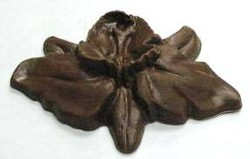 Chocolate Orchid Large