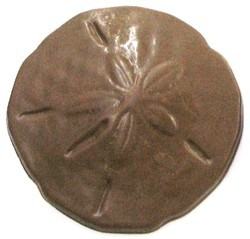 Chocolate Sand Dollar Large