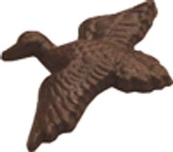 Chocolate Duck in Flight - Click Image to Close