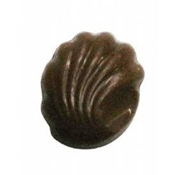 Chocolate Candy Shell w/ Scallop