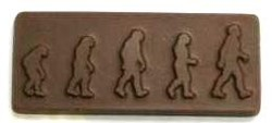 Chocolate Evolution Rectangle